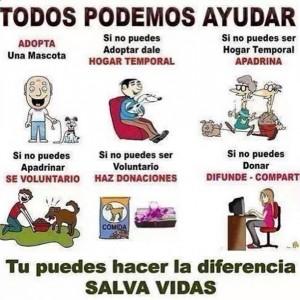 Haz la diferencia!