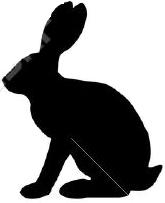 conejoperfil