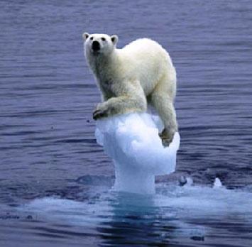 http://diarioecologia.com/el-deshielo-del-artico-aumenta-la-mortalidad-del-oso-polar/
