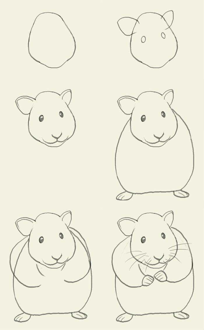 Как нарисовать хомяк карандашом поэтапно