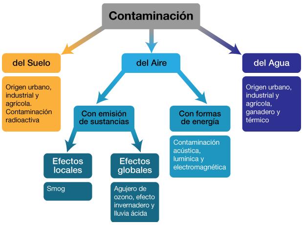 Nuestro medio ambiente contaminacion ambiental for Cuantos tipos de arboles hay en el mundo