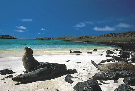 external image galapagos-islands.jpg