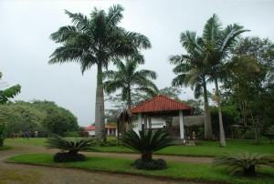 jardin-botanico-sto-domingo