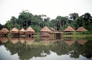 orikapaw