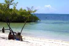 tortuga-bay-galapagos-beach1