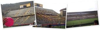 Ver Estadio