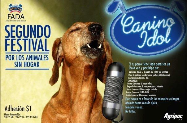canino-idol