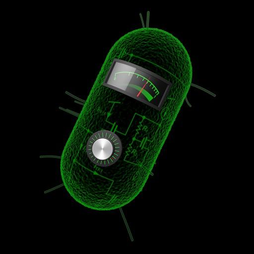 celula-calculadora-1