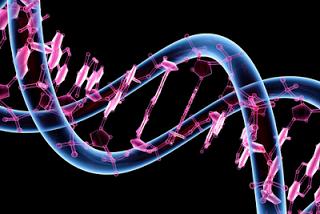 Computación en células vivientes