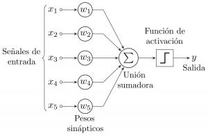 perceptron2