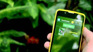 Aplicaciones para cultivar plantas y crear huertos aumentan de usuarios. Apps