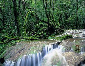Manejo Uso Público Turismo areas Protegidas islas galapagos