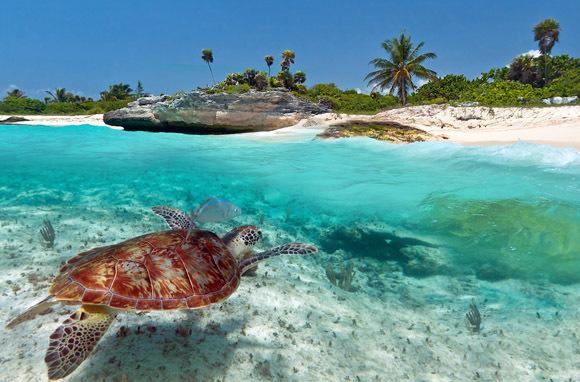 las mejores playas de centroamerica