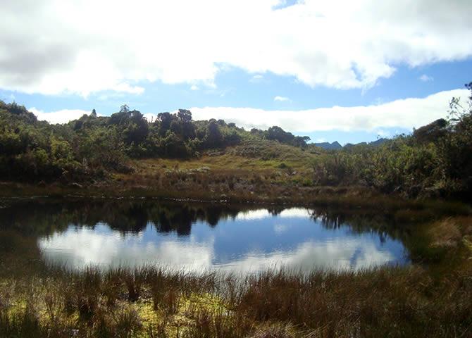 Bosque Protector Collay Chordeleg laguna