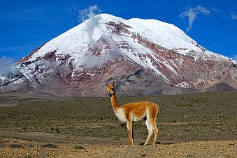 nevado chimborazo excursiones tours turismo ecuador