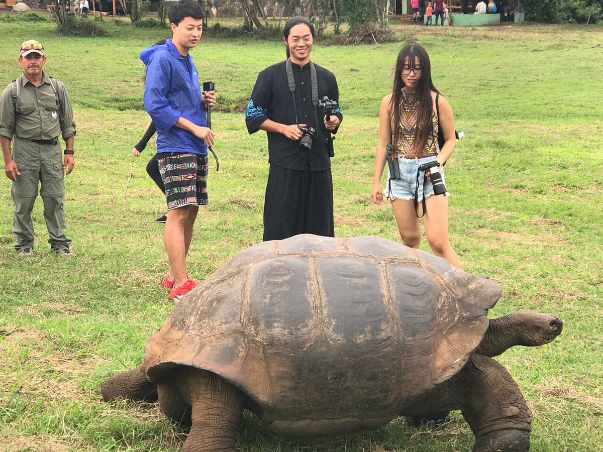 Más turistas chinos llegan de vacaciones a las Islas Galápagos. Ecuador