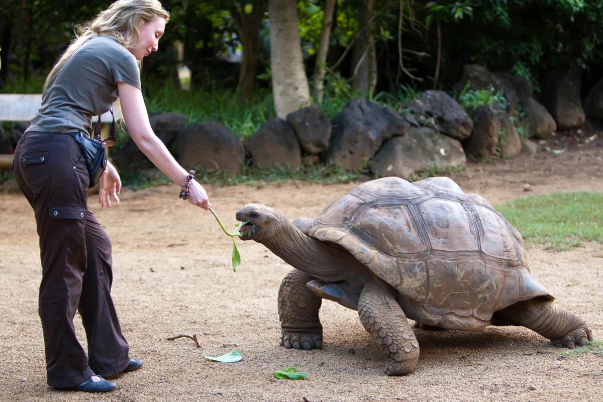 Campaña El Turismo No Para Impulsa excursiones tours y recorridos a las Islas Galápagos