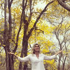 El florecimiento de los Guayacanes en Colimes atrae a turistas. Turismo Ecuador