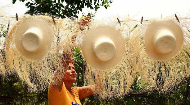 Festival del sombrero de paja toquilla un éxito en Cuenca Ecuador