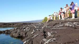Claves para reactivar el turismo inician por turistas locales. Ecuador 2020