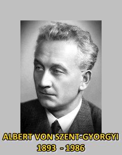 nobel laureate Szent Gyorgyi 1937