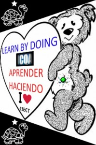 APRENDER HACIENDO LEARN BY DOING CSECT