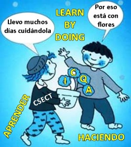 LEARN BY DOING EN EL ICQA Y CSECT