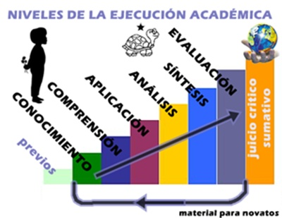 NIVELES DE EJECUCIN ACADMICA